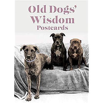 Old Dogs Wisdom