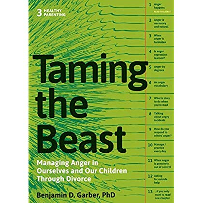 Taming the Beast Within: Managing Anger in Ourselves and Our Children Through Divorce (Healthy Parenting)