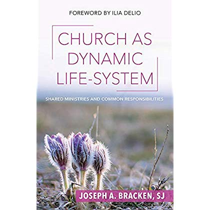 Church As Dynamic Life-system: Shared Ministries and Common Responsibilities (Catholicity in an Evolving Universe)